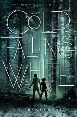 Cold Falling White by G.S. Prendergast book cover