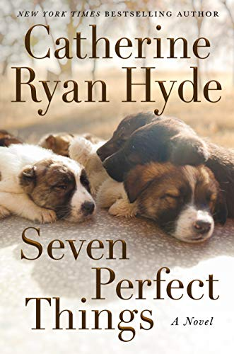Seven Perfect Things by Catherine Ryan Hyde book cover