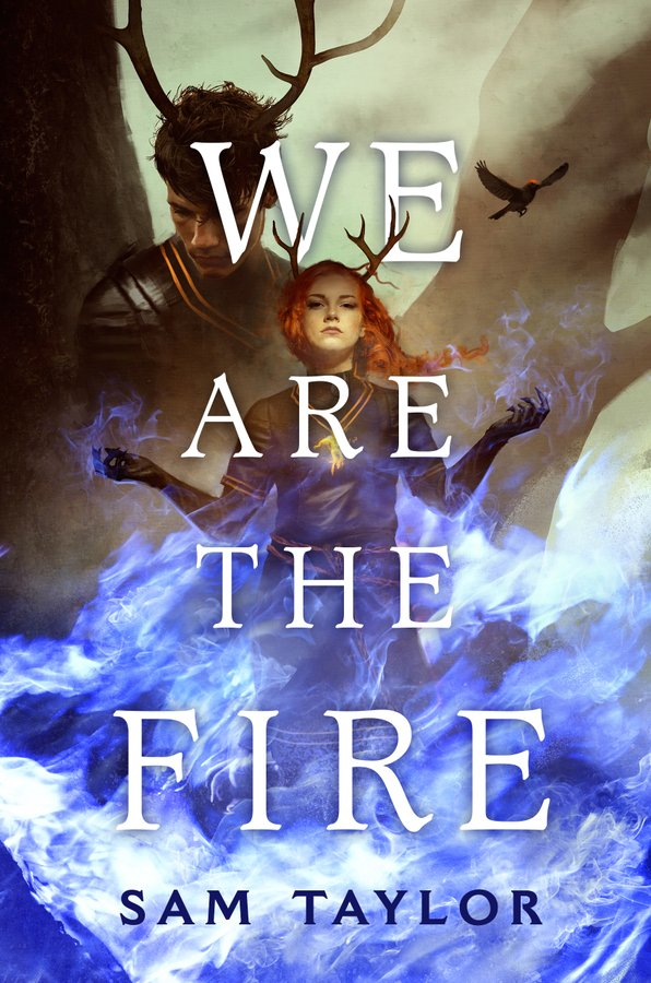 We are the Fire by Sam Taylor book cover